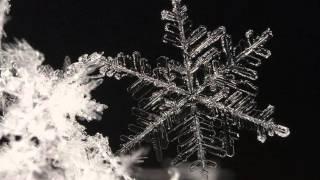 Video Bea Ch. Dostálová - Za kapkou