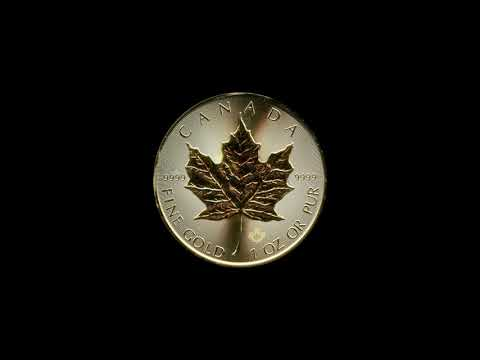 Video - Maple Leaf Gold - 2019
