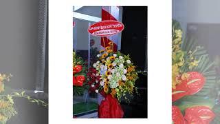 Khai Trương Showroom Bình Dương Part 2