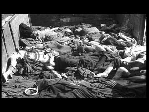焼却棟での裸の体の積み重ねと刑務所の杭の積み重ねが死亡から取り除かれた... HDストックビデオ[2:47x720p]