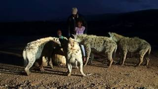 preview picture of video 'Feeding Hyenas (3/4), Ethiopia'