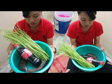 Coca Cola Fish Recipe – Beautiful Girl Cooking Fish With Coca Cola / AHA Factory