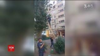 У Миколаєві рятувальникам довелося знімати дитину із тополі