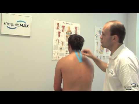 Die Öbungen für die Haltung und den Schultergürtel