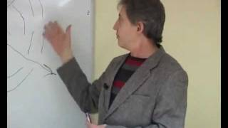 Анатолий Некрасов - Возможности сознания