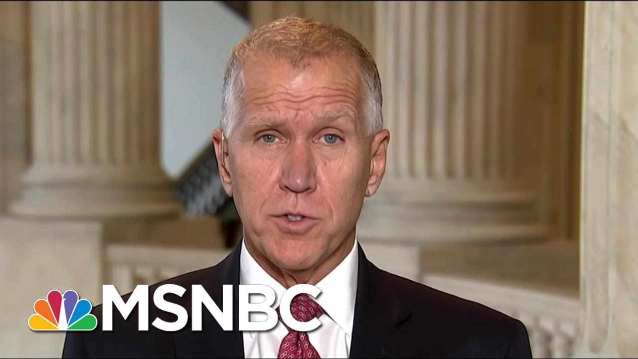 Senator Thom Tillis Co-Sponsors Legislation For Undocumented Kids | Morning Joe | MSNBC thumbnail