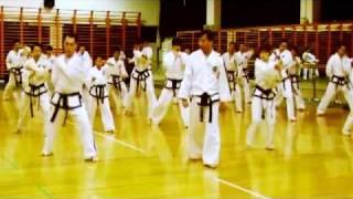 Master Kim Ung Chol VIII Dan Taekwon-do ITF.
