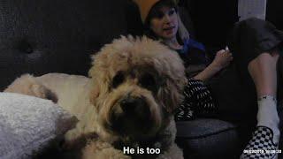 Hayley Williams - Taken [Official Lyric Video]