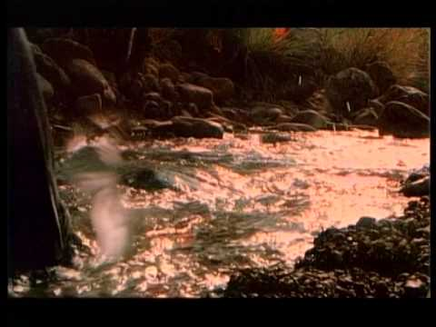 "Mr.Credo ""Мама Азия"" [Оfficial video] 1998"