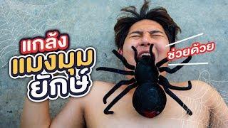 แมงมุมยักษ์ตัวนั้น..ฉันส่งมันไปแกล้งพวกเธอ!! - Epic Toys