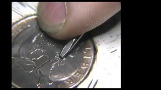 Hand Engraving Mr. Natural Shading R. Crumb