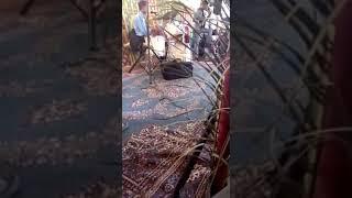 Yahia Elhasnawi De Kenitra Galbo Man Lhdid