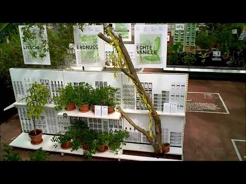 "HHU ""Jungle Food"" Ausstellung - im Fluge"
