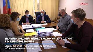 Малый и средний бизнес Красногорска получит 9 миллионов рублей