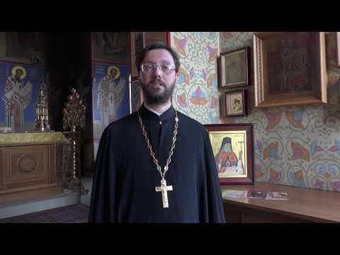 Видеосюжет о работе Общества православных врачей