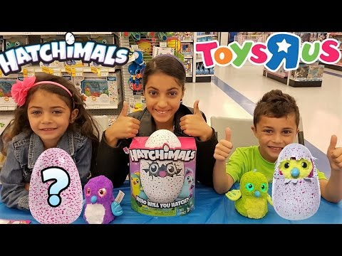New Hatchimals Magical Surprise Egg Opening at Toys R Us!!! Kids Toy Review