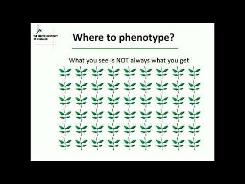 Identifying Plant Drought Response 2015