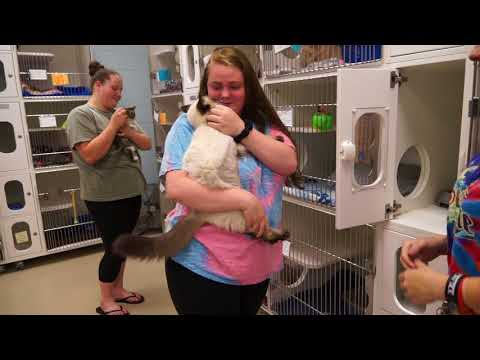 Video: WCJC Animal Shelter, May 25