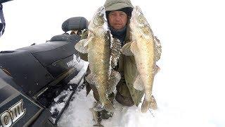 Отчет о рыбалке на рыбинском водохранилище
