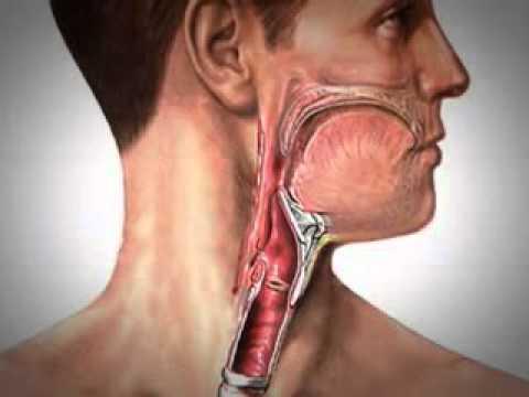 Enfermedad hipertensiva de los nervios