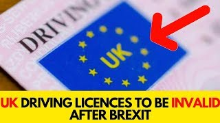 UK Driving Licences To Be Invalid After Brexit | Speedy Facts
