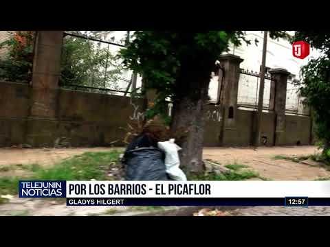 POR LOS BARRIOS - EL PICAFLOR