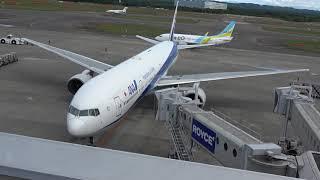 新千歳空港ANANH64便準備完了後、プッシュバック待機!10分!!B777-300JA753A