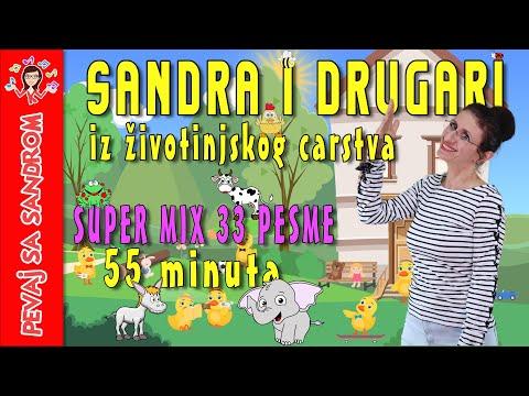 💖 Sandra i drugari iz životnjskog carstva 💖 Pevaj Sa Sandrom | Dečije pesme | Dečije priče