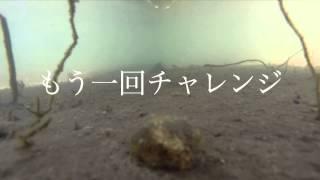 ラジコンボートで水中撮影 GoPro
