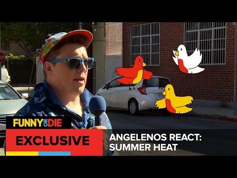 Angelenos React: Summer Heat