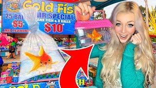 FISH CARNIVAL GAME WIN!! I Won A Pet Goldfish At The Fair!!