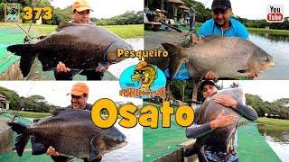 Os Tambas do Pesqueiro Osato - Fishingtur na TV 373