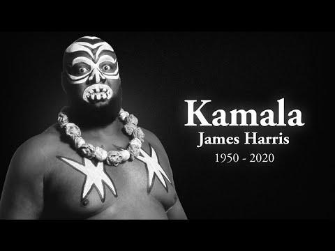 In Memory of Kamala