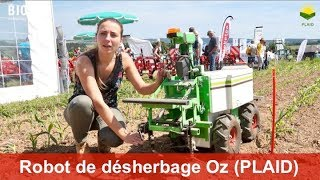 Robot de désherbage Oz de Naïo Technologies