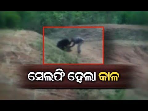 Медведь растерзал любителя селфи в Индии
