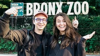 Visit the Bronx Zoo for Free | NYC VLOG