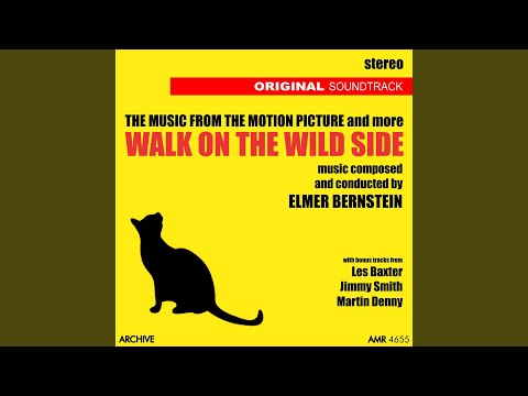 Walk on the Wild Side (Stereo)