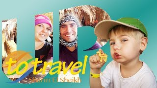 Анонс серии видео о нашей поездке в Египет