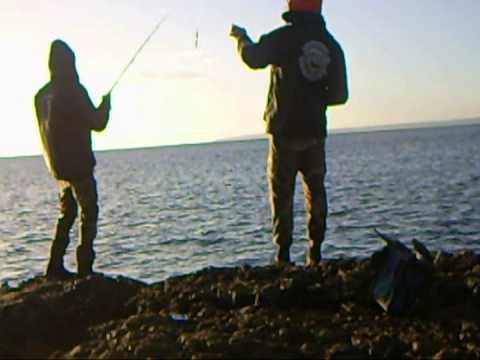 Serbatoi di Kryvyi Rih per pesca