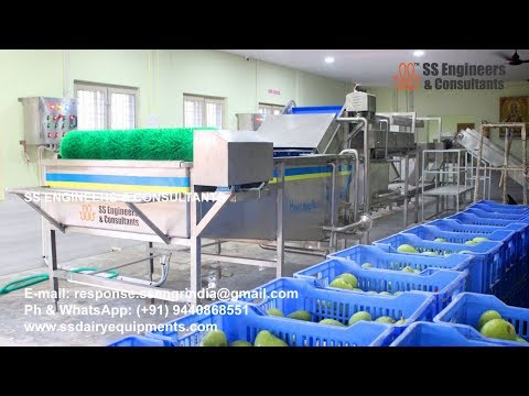 Automatic Fruits Vegetables Washing Machine