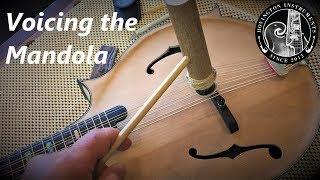 Voicing the Mandola