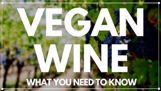 Vegan Wine - What you need to know.
