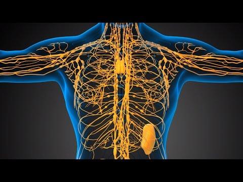 Механическая желтуха лечение в москве
