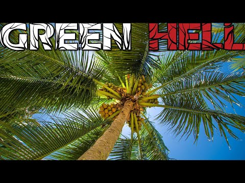 NEW FOOD SOURCE FOUND! (Green Hell)(16)
