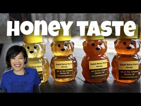 HONEY Spring vs. Summer Harvest TASTE TEST | HONEY BUTTER RECIPE & All About Honey Bees