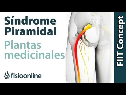 Fluoroquinol nel trattamento della prostatite