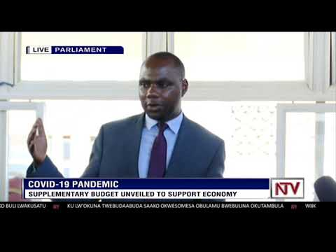 Supplementary budget to support economy unveiled