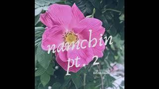 Gambar cover namchin pt 2 (prod. B3LLA) - drizzsoul