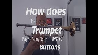 How does the trumpet play soo many notes with only 3 buttons