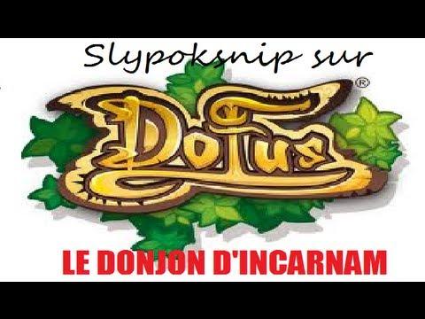 comment entrer dans le donjon d'incarnam dofus